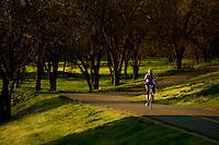 The American River bike trail in Sacramento CA.   Photo Brian Baer