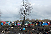 France. Refugees. Calais. So-called Jungle camp . Area destroyed by a fire the night before (November 21st 2015)