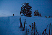 A skier walks to the toilet outhouse adjacent to the Elfin Lakes Hut at dawn in Garibaldi Provincial Park, British Columbia, Canada.