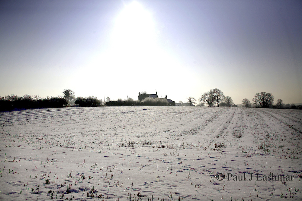 Ice covered hedgerows and fields around Dales lodge, Kettering
