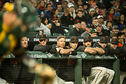 The San Francisco Giants watch from the dugout as they host the Oakland Athletics at AT&T Park in San Francisco, California, on March 30, 2017. (Stan Olszewski/Special to S.F. Examiner)