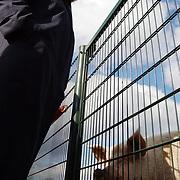 College B&W Huizen bezoeken de kinderboerderij Huizen, hek, Willy Metz, varken, lachen