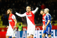 Dimitar BERBATOV - 01.02.2015 - Monaco / Lyon - 23eme journee de Ligue 1 -<br />