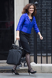 © licensed to London News Pictures. London, UK 03/09/2013. Theresa Villiers, Secretary of State for Northern Ireland attending the Cabinet meeting in Downing Street on Tuesday, September 3, 2013. Photo credit: Tolga Akmen/LNP