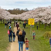 NLD/Amstelveen/20200318 - Bloesempark Amstelveen, Bloesempark in Amstelveen met Corona waarschuwing