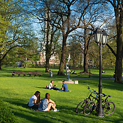 Green grass lawn in Lawns in Bastion Hill park, Riga, Latvia