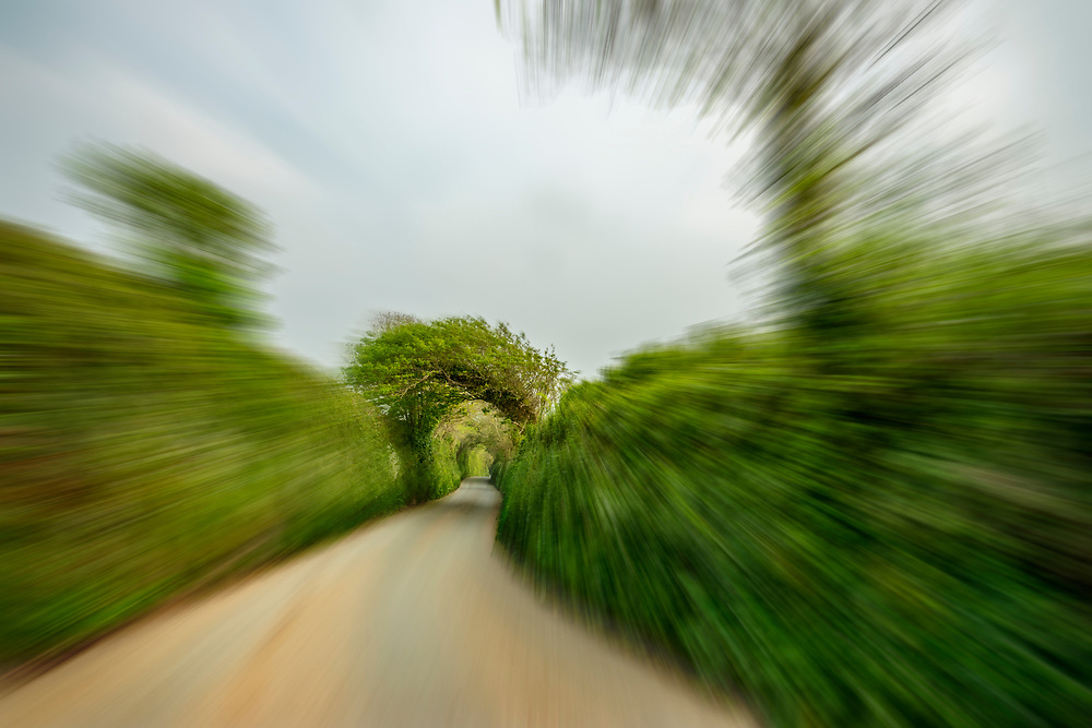 Motion blur down a Cornwall England country road with green vegetation creating a tunnel effect.  Open Edition Prints and Licensing