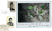 """(left) Archive photos. ID photo of Maria and her son. (right) I made 5 photographs of nature for Maria and asked her to choose one. She chose the cactus which she said reflects her relationship with her son who lives three streets from us, but who never comes to visit her. """"Xavi always does his thing, but he does call me every day at 9 at night. I think it's a matter of character."""""""