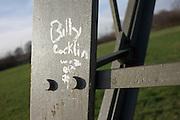Billy Cocklin has painted woz ere on the aluminium leg of an electricity pylon near a housing estate in Beckton.