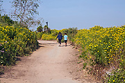 Mother and son walking along trail in Ballona Wetlands, Playa Vista, Los Angeles, California, USA