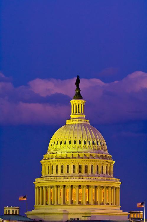 United States Capitol at twilight, Washington D.C., U.S.A.