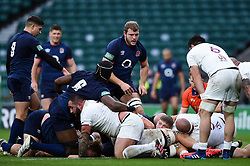 Jack Willis of England looks to have crossed the try-line in the first half - Mandatory byline: Patrick Khachfe/JMP - 07966 386802 - 14/11/2020 - RUGBY UNION - Twickenham Stadium - London, England - England v Georgia - Autumn Nations Cup