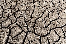 Cracked mud from dried pond, Ladder Ranch, west of Truth or Consequences, New Mexico, USA.
