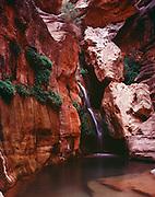 Elves Chasm, Royal Arch Creek, Colorado River mile 116.5, Grand Canyon National Park, Arizona, USA; 6 May 2008, Pentax 67II, 105 mm lens, polarizer, Velvia 100