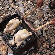 THE PHILIPPINES (Boracay). 2009. Two chicken are cooked on a barbeque after the cockfighting at the Boracay Cockpit,  Boracay Island. Photo Tim Clayton <br /> <br /> Cockfighting, or Sabong as it is know in the Philippines is big business, a multi billion dollar industry, overshadowing Basketball as the number one sport in the country. It is estimated over 5 million Roosters will fight in the smalltime pits and full-blown arenas in a calendar year. TV stations are devoted to the sport where fights can be seen every night of the week while The Philippine economy benefits by more than $1 billion a year from breeding farms employment, selling feed and drugs and of course betting on the fights...As one of the worlds oldest spectator sports dating back 6000 years in Persia (now Iran) and first mentioned in fourth century Greek Texts. It is still practiced in many countries today, particularly in south and Central America and parts of Asia. Cockfighting is now illegal in the USA after Louisiana becoming the final state to outlaw cockfighting in August this year. This has led to an influx of American breeders into the Philippines with these breeders supplying most of the best fighting cocks, with prices for quality blood lines selling from PHP 8000 pesos (US $160) to as high as PHP 120,000 Pesos (US $2400)..
