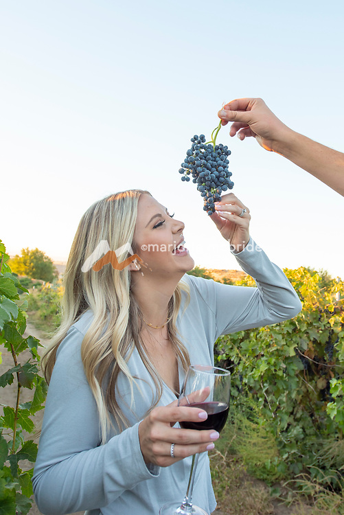 Couple having fun trying grapes while enjyoing wine and the vineyard at Holeinsky 's in Buhl, Idaho.