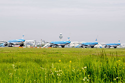 KLM Starts Gradual Restoration of European Network. The cabinet will provide support of 2 to 4 billion euros to KLM. Schiphol airport during Coronavirus crisis, in Amsterdam, Netherlands, on May 10, 2020. Photo by Robin Utrecht/ABACAPRESS.COM