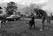 Katie Block with homeless dogs cared for by Island Dog, Los Machos Beach, Puerto Rico.