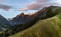 THEMENBILD - Kühe auf einer Bergwiese mit dem Kitzsteinhorn bei Sonnenaufgang, aufgenommen am 26. Mai 2018 in Kaprun, Österreich // Cows on a mountain meadow with the Kitzsteinhorn at sunrise, Kaprun, Austria on 2018/05/26. EXPA Pictures © 2018, PhotoCredit: EXPA/ JFK