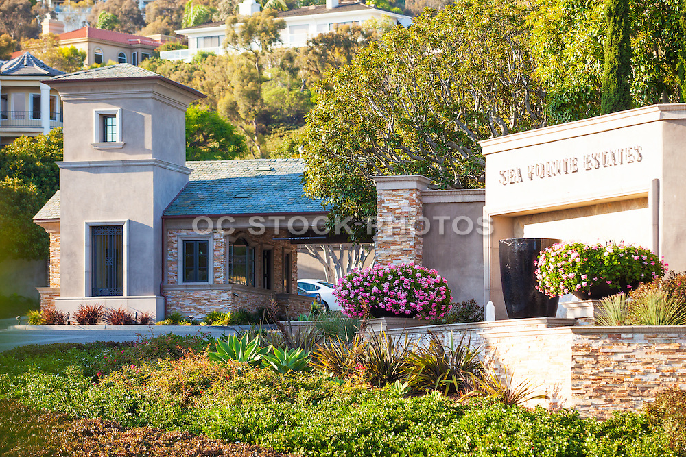 Luxury Homes in Sea Pointe Estates of San Clemente
