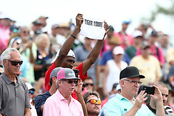 May 13, 2018 - Ponte Vedra Beach, Florida, United States - A fan holds up a towel on the 4th green for Tiger Woods during the final round of The PLAYERS Championship at TPC Sawgrass. (Credit Image: © Debby Wong via ZUMA Wire)