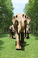 Elephants in Green Park