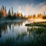 The sun rises through the early morning mist on a pond in Mount Rainier National Park.