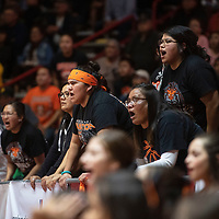 Gallup Bengals fans cheer on their team against the Kirtland Central Broncos during their 4A girls NMAA State Basketball quarterfinal playoff game at Dreamstyle Arena (The Pit) Tuesday night in Albuquerque. The Broncos beat the Bengals 61-54 to advance to the semifinal round.