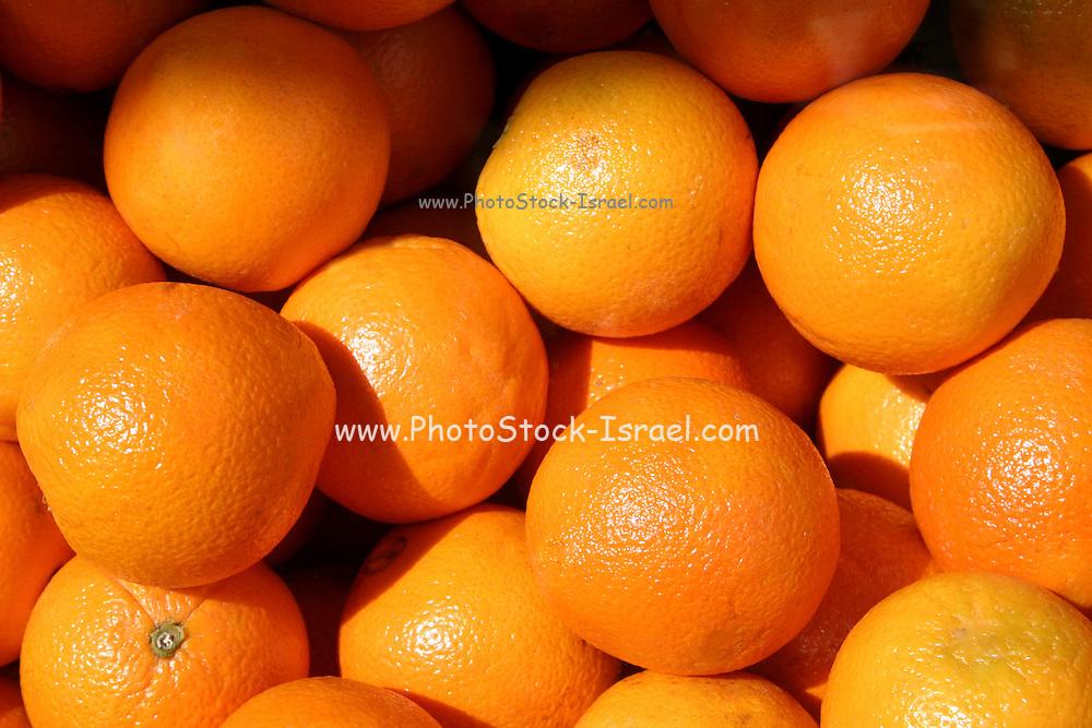 A pile of fresh, ripe oranges