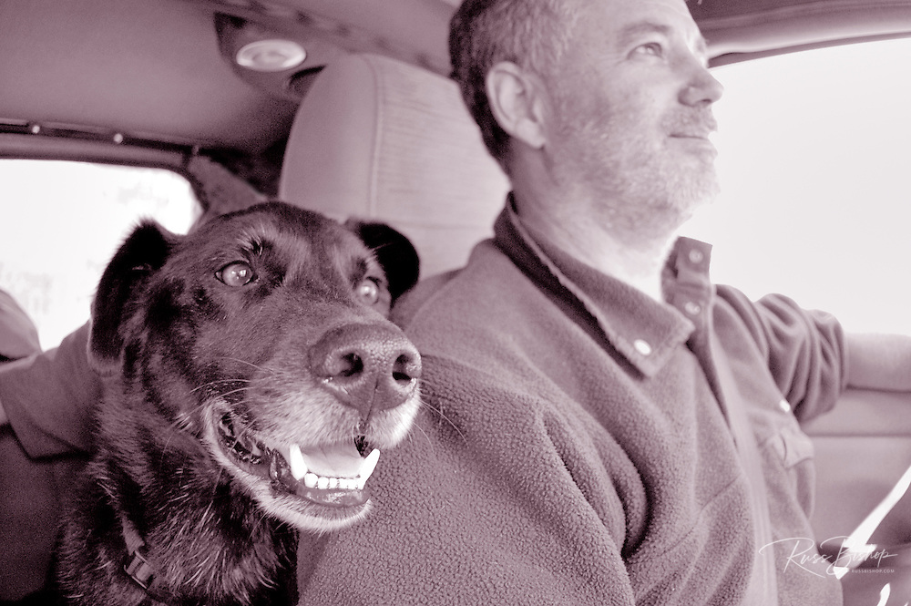 Man and his best friend on a road trip, Yosemite National Park, California USA