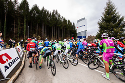 Riders at start during cycling race 6th Grand Prix Adria Mobil 2021, on March 28, 2021, in Novo mesto, Slovenia. Photo by Vid Ponikvar / Sportida