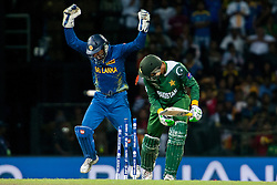 © Licensed to London News Pictures. 04/10/2012. Pakistani batsmen Shoaib Malik is bowled as Sri Lankan wicketkeeper Kumar Sangakkara celebrates  during the World T20 Cricket Mens Semi Final match between Sri Lanka Vs Pakistan at the R Premadasa International Cricket Stadium, Colombo. Photo credit : Asanka Brendon Ratnayake/LNP