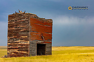 Remnants of the Bingo Grain Company Grainery in Okaton, South Dakota, USA