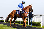 Poetic Force ridden by Richard Kingscote trained by Tony Carroll - Mandatory by-line: Robbie Stephenson/JMP - 13/08/2020 - HORSE RACING - Bath Racecourse - Bath, England - Bath Races