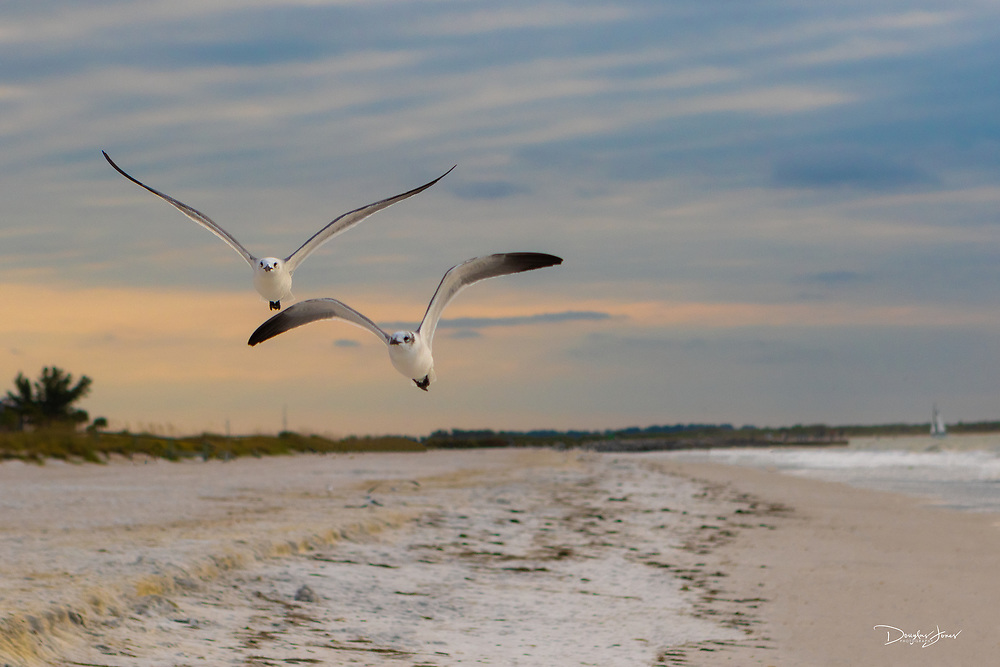 Dec 25, 2014; St. Pete Beach, FL USA; Images from Pass-A-Grille Beach and John's Pass at Madiera Beach.
