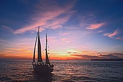 sailboat at sunset, Key West, Florida, Atlantic Ocean