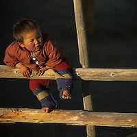 MONGOLIA, Nomadic youngster climbs on fence outside their summer cabin in the Darhad Valley.