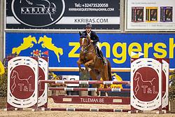 De Wit Thomas, BEL, El Nino Bull's Eye Z<br /> Pavo Hengsten competitie - Oudsbergen 2021<br /> © Hippo Foto - Dirk Caremans<br />  22/02/2021