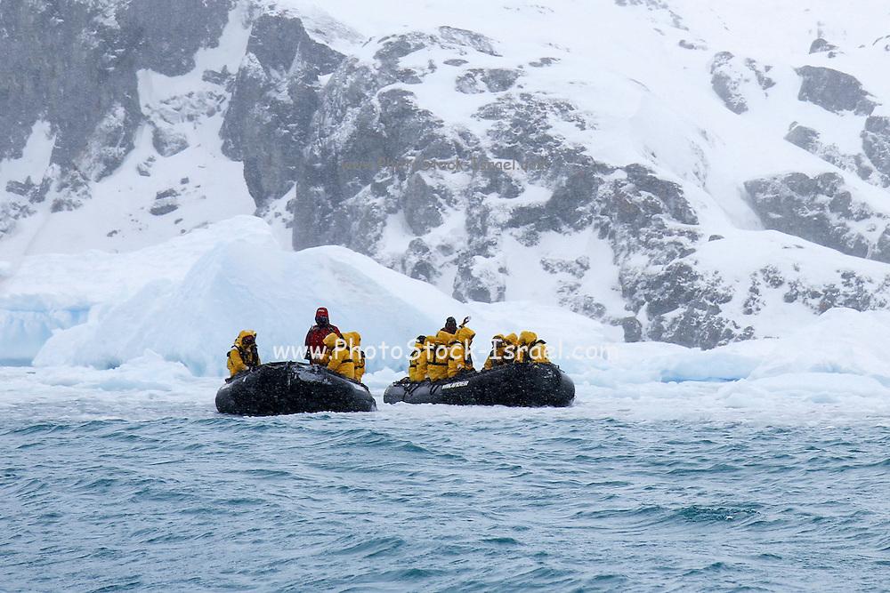 Tourists on  Zodiac rigid inflatable boats, Cierva Cove, Antarctica