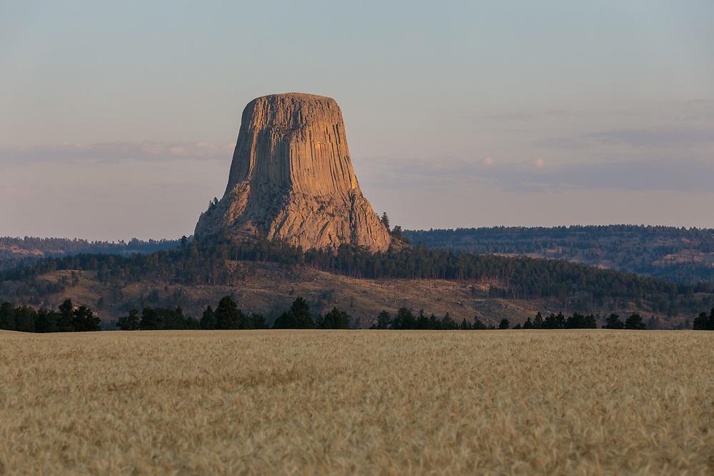 Devil's Tower National Monument at sunrise