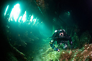 Rebreather diver inside the wreck of the Tabarka, a blockship sunk in Scapa Flow