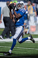 September 28, 2014: Indianapolis Colts wide receiver T.Y. Hilton (13) catches a pass before a football game between the Indianapolis Colts and Tennessee Titans at Lucas Oil Stadium in Indianapolis, IN. NFL American Football Herren USA SEP 28 Titans at Colts PUBLICATIONxINxGERxSUIxAUTxHUNxRUSxSWExNORxONLY Icon1409280410<br /> <br /> September 28 2014 Indianapolis Colts Wide Receiver T Y Hilton 13 catches A Passport Before A Football Game between The Indianapolis Colts and Tennessee Titans AT Lucas Oil Stage in Indianapolis in NFL American Football men USA Sep 28 Titans AT Colts PUBLICATIONxINxGERxSUIxAUTxHUNxRUSxSWExNORxONLY Icon1409280410