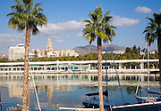 Palm trees in new port development looking towards Malaga city centre, Spain