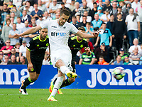 Football — 2016 / 2017 Premier League - Swansea vs Chelsea<br /> <br /> Gylfi Sigurdsson of Swansea City scores his team's first goal at the Liberty Stadium.<br /> <br /> pic colorsport/winston bynorth