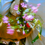 A Bouquet of picked wild flowers with motion blur as the sway in a backpack