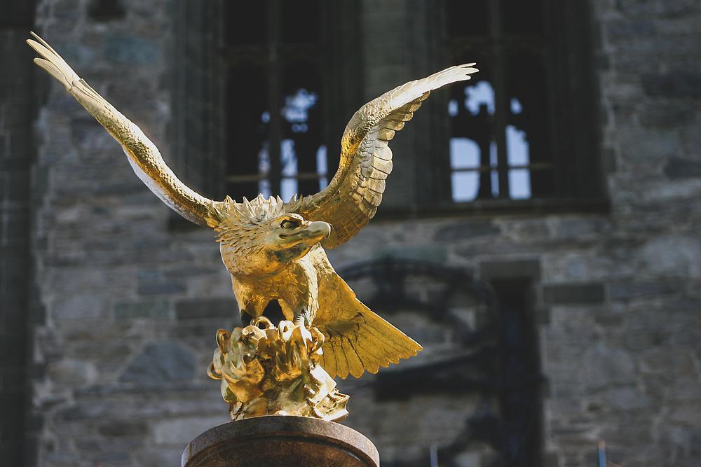The golden eagle statue on Boston College's Lyndon Lane.