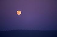 Full moon rising in evening sky, Del Norte County, California
