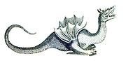 Copperplate print of Mythological creature and sea monster from Johannes Jonston book of nature 'Dr. I. Ionstons Beschrijving vande natuur der vogelen neffens haer beeldenissen in koper gesneden' Published in Amsterdam in 1660