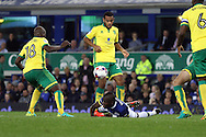 Enner Valencia of Everton hits the ground after he is fouled. EFL Cup, 3rd round match, Everton v Norwich city at Goodison Park in Liverpool, Merseyside on Tuesday 20th September 2016.<br /> pic by Chris Stading, Andrew Orchard sports photography.