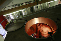 winemaker Eric Pfifferling , in the south of France working with the harvest in Tavel